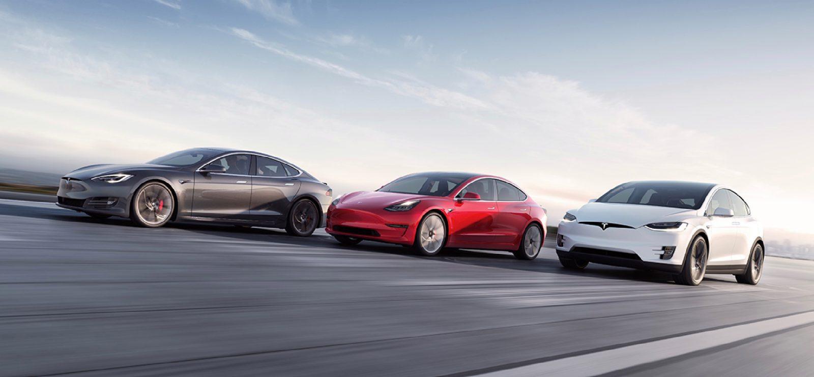 Ambientalisti contro la Gigafactory Tesla in Germania