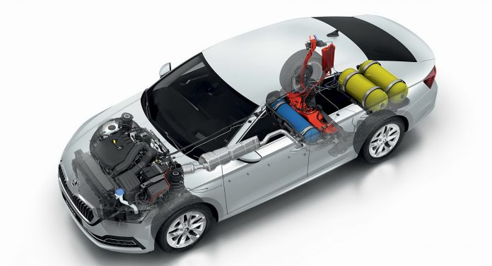 Metano Auto, in Italia il 19% è Biologico